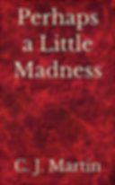 Perhaps a Little Madness - book by C. J. Martin coming soon