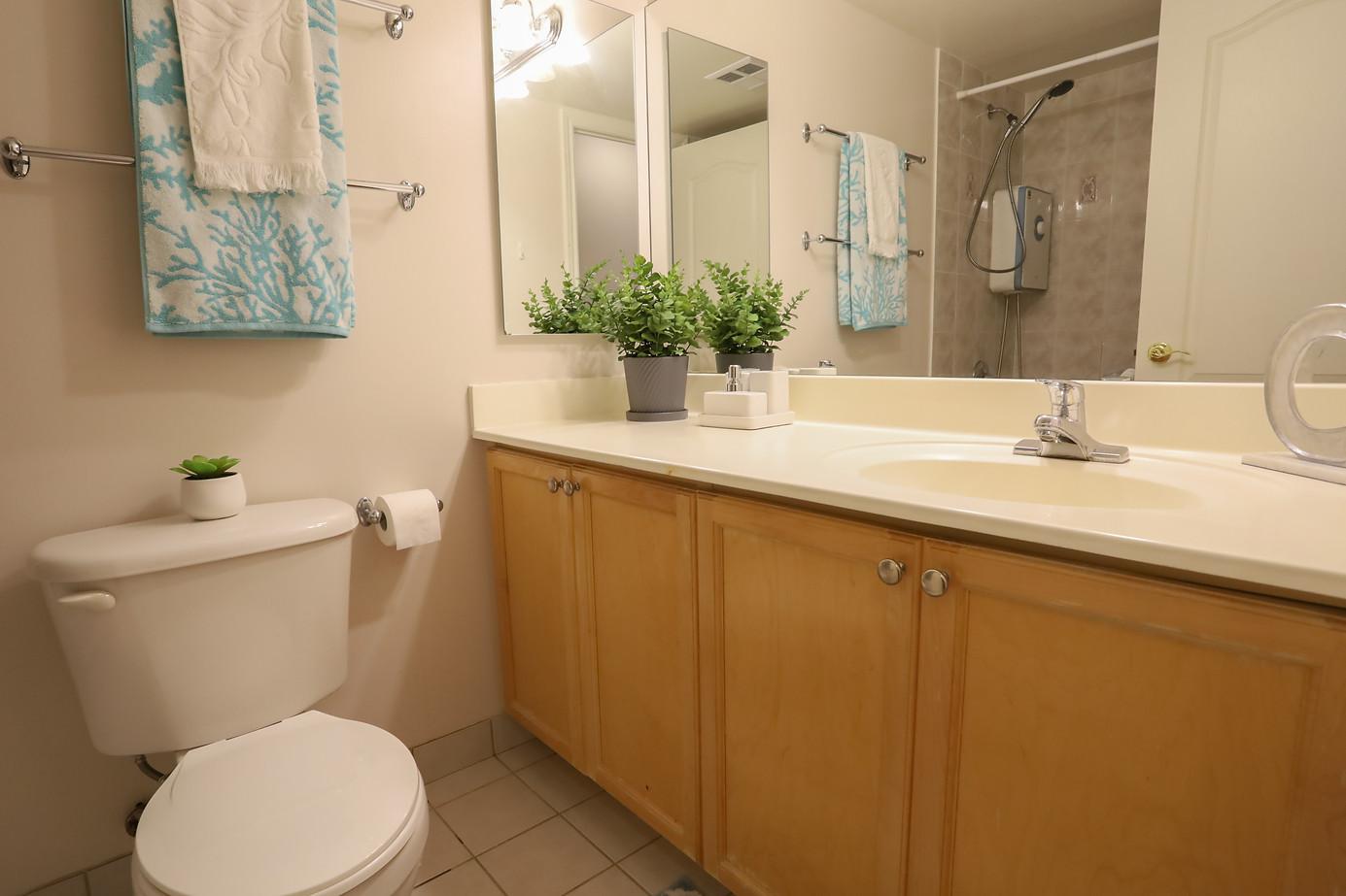 washroom 21.jpeg