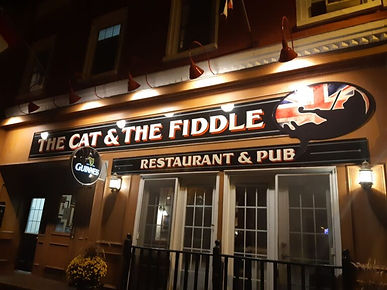 Cat-and-fiddle-768x576.jpeg