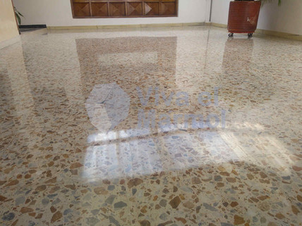 Cristalizado_pisos_baldosa.jpg