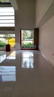 Cristalizado_pisos_baldosa_alfa.jpg