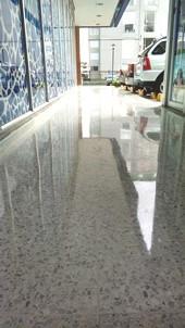 Pullida_pisos_baldosin.jpg