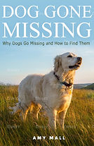 DogGoneMissing 8-13..jpg