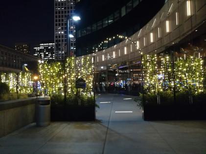 photo_chicago night plaza.jpg