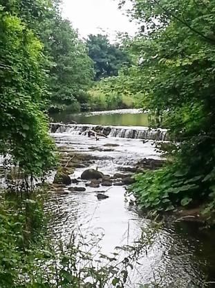 photo_ireland creek.jpg