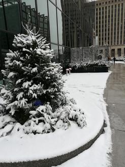 photo_chicago in snow.jpg