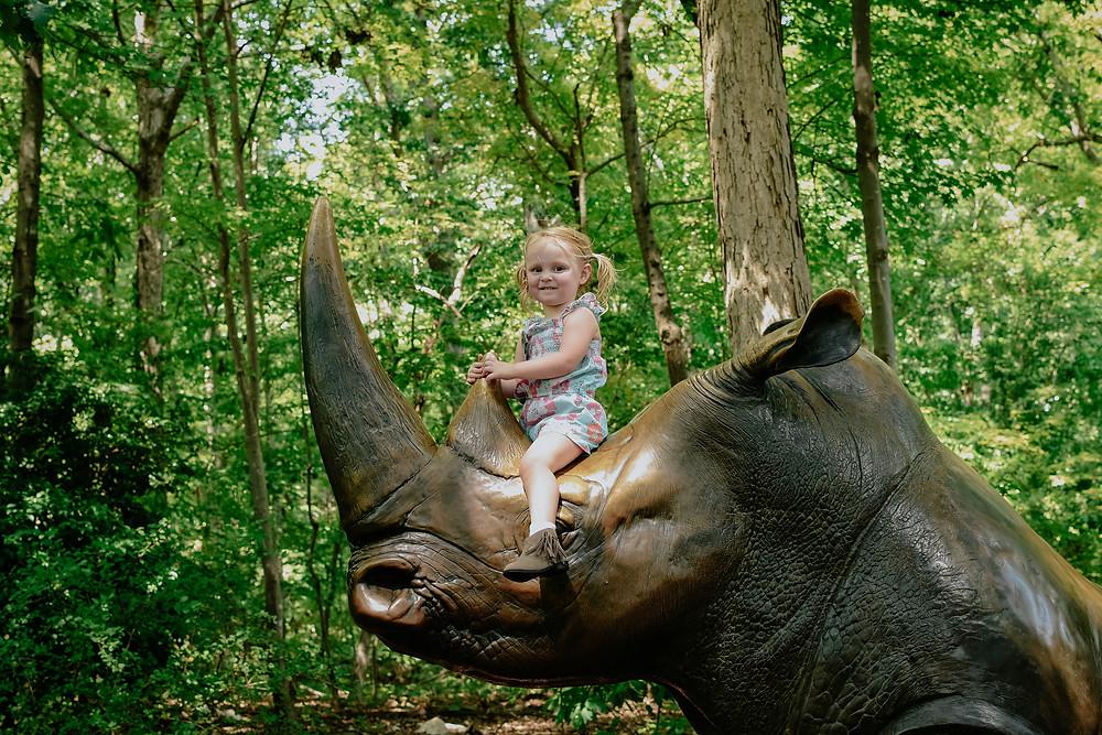 riding rhino
