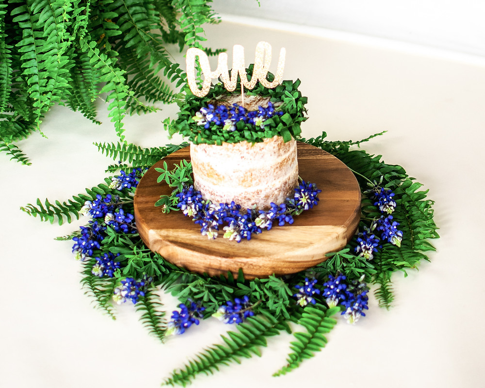 Bluebonnet and fern smash cake