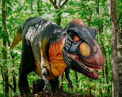 One Last Visit to NC Zoo & Dino Bus!