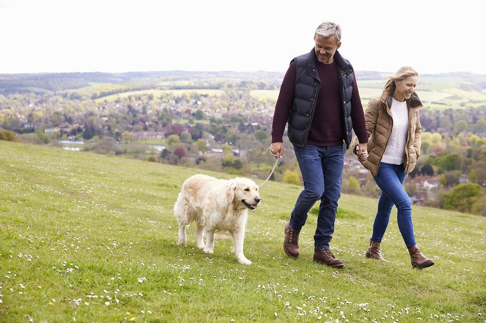 Mature Couple Taking Golden Retriever For Walk.jpg