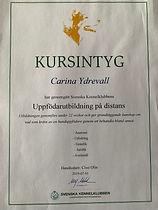 Carina Ydrevall Kurstintyg