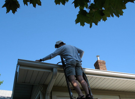 Are You Looking for Gutter Cleaning Wellington?