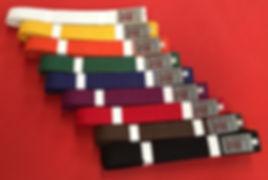 Kaizen Bu Ryu Rank Belts