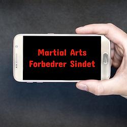 Martial arts forbedrer sindet artikel