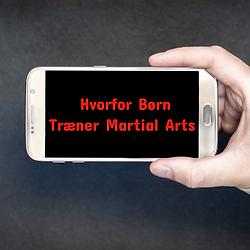 Hvorfor børn træner martial arts artikel