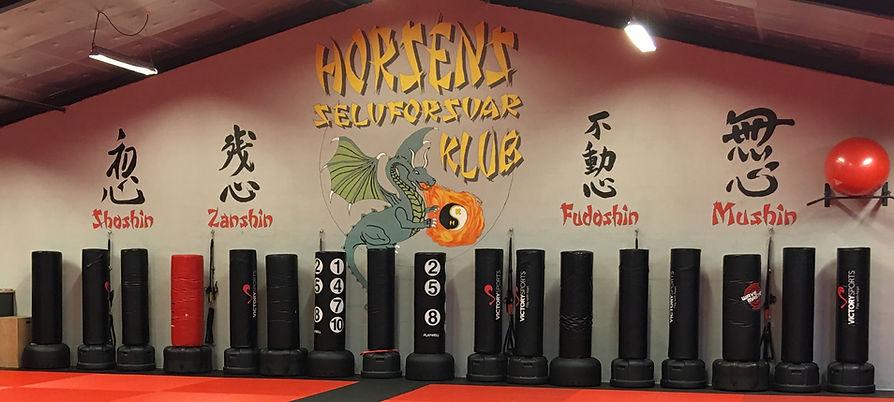 De 4 Shin på væggen i Horsens Selvforsvar Klub