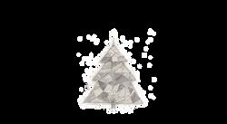 albero-12