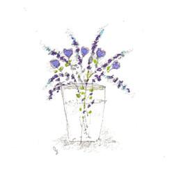 fiori 19 maggio 12