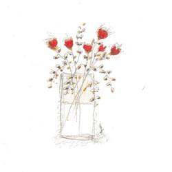 fiori 19 maggio 1