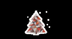 albero-6