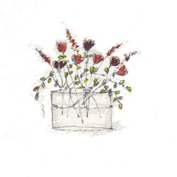 fiori 19 maggio 9