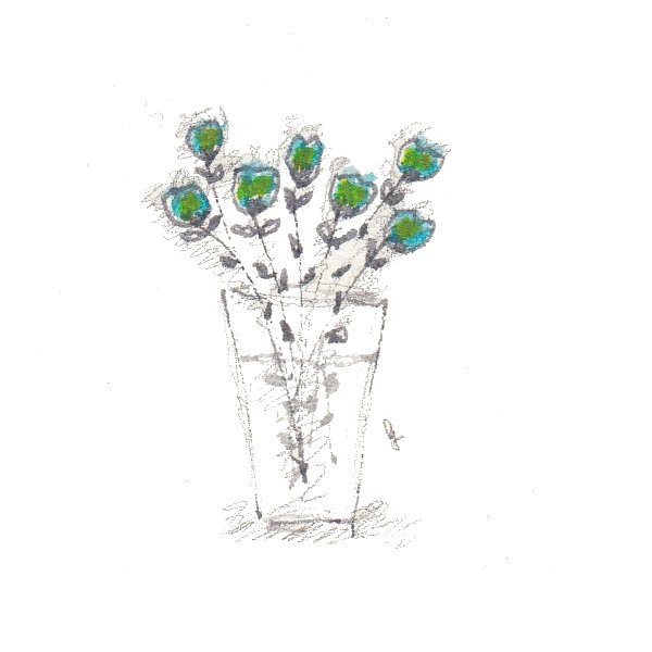 fiori 19 maggio 4