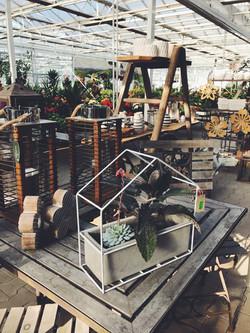 Gärtnerei Blütenpracht Gartencenter