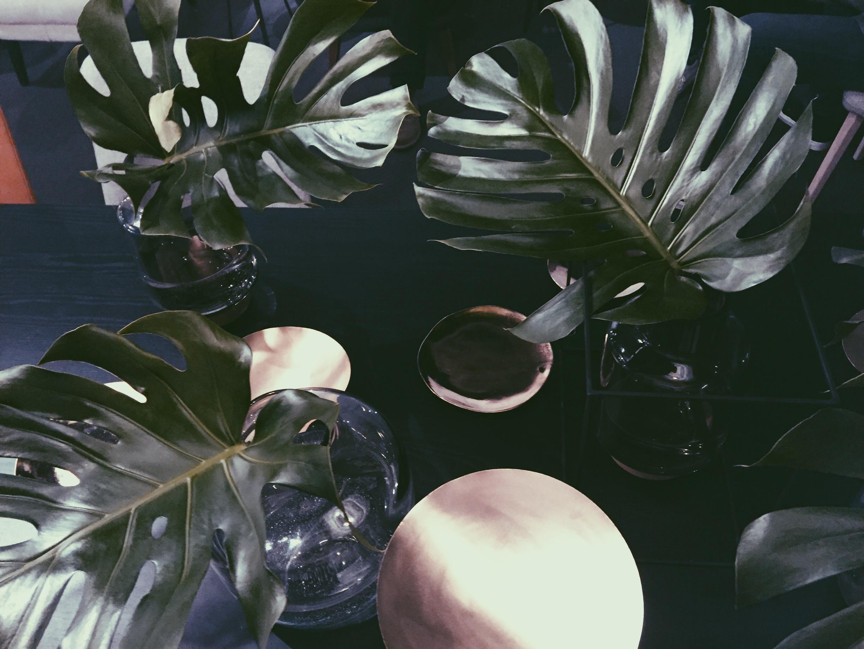 Floristik Interior Schnittblumen