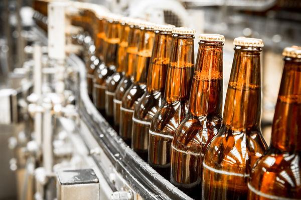 Beer bottles on the conveyor belt.jpg