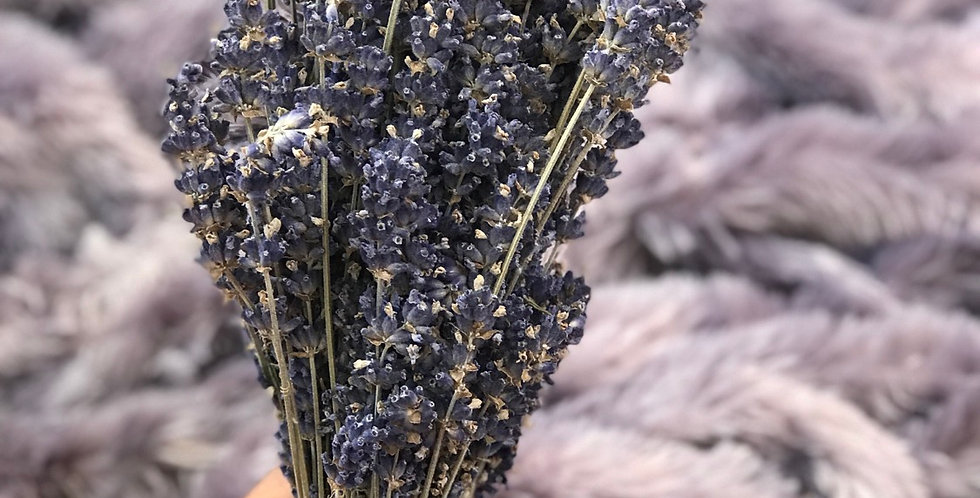 Fresh Picked Oregon Lavender