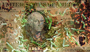 C0249512-Dollar_Bill_and_Germs.jpg