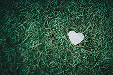 heart in the grass-unsplash.jpg