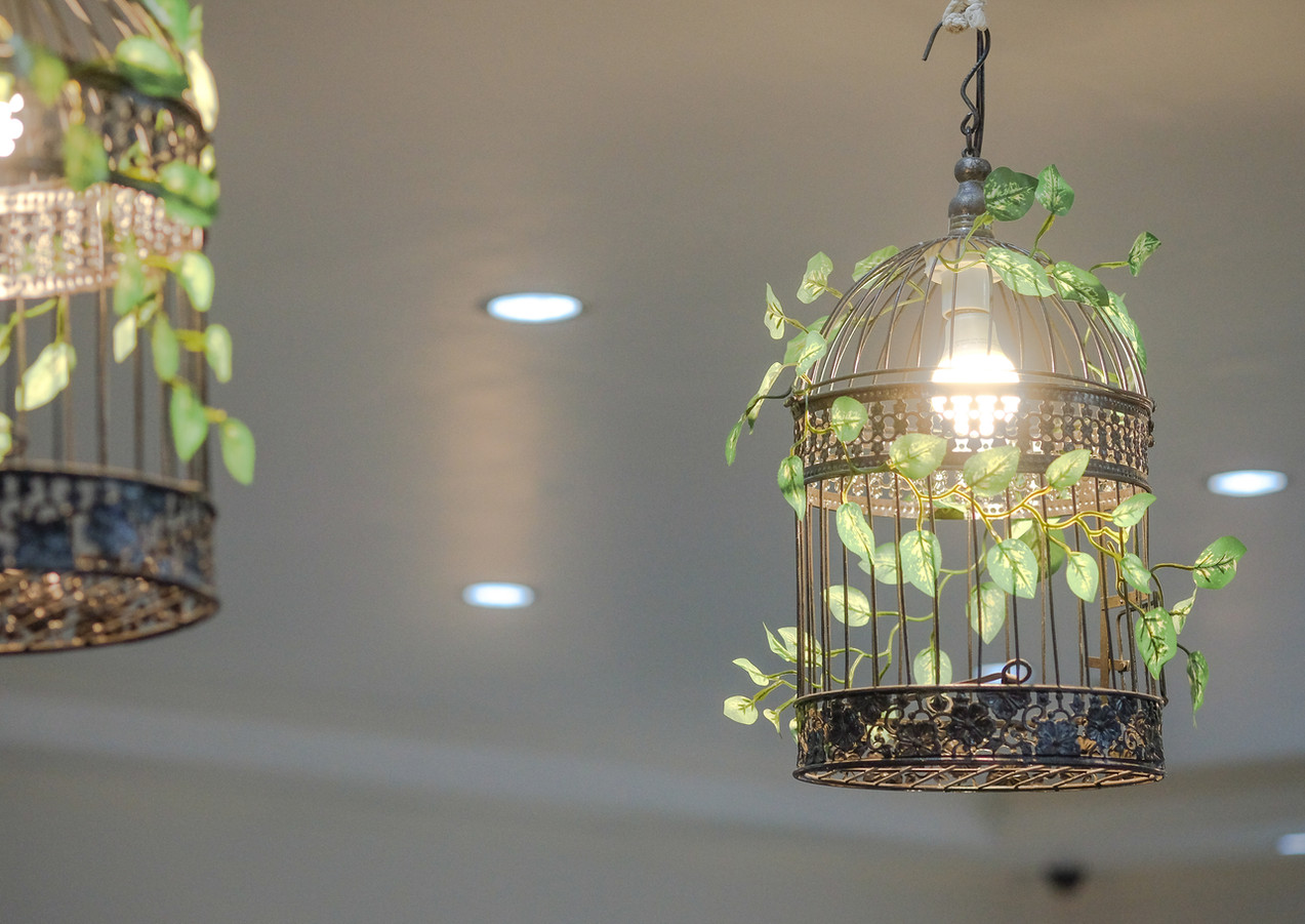 Bird cages laced with greenery enhances the Garden theme of the hotel and the hotel.
