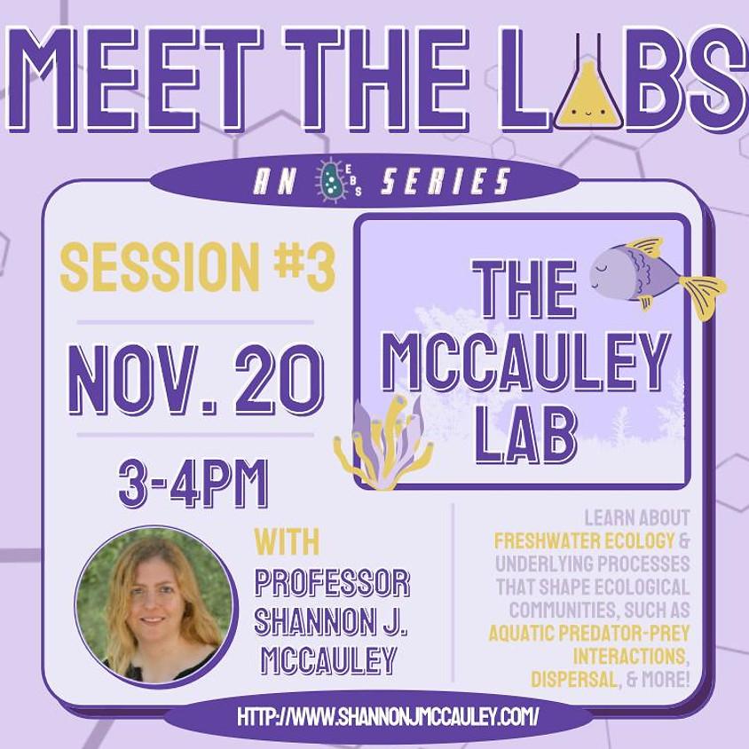 Meet The Labs: The McCauley Lab