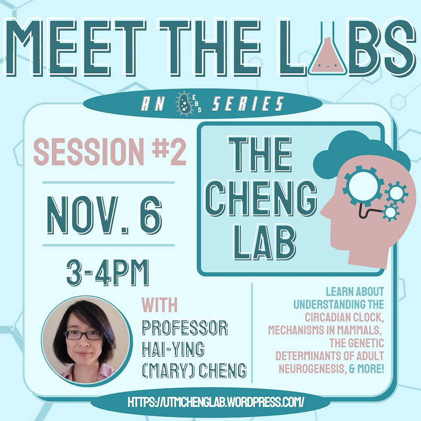 Meet The Labs: The Cheng Lab