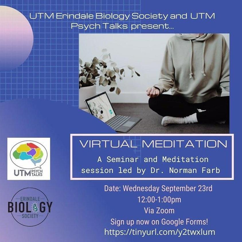 Virtual Meditation with Professor Farb
