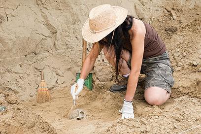 Archaeological Dig