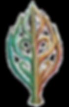 Cadia logo.png
