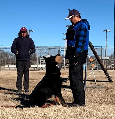 IGP/Schutzhund Trainer, Joseph Lin, & Armus Vom Boomerbucht BH, IPO1, IGP2 (Earned at Regionals) IGP3 Czech, Working-line German Shepherd