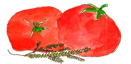 Sauce tomates courgettes poivrons