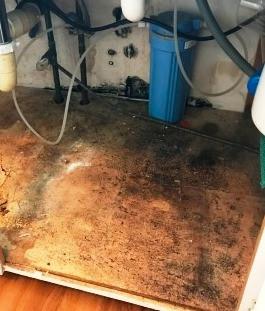 Under Kitchen Sink Before