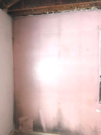 Mold ridden bedroom wall before