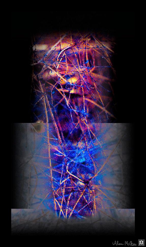06McKee_Treespirit_medium_format_digital