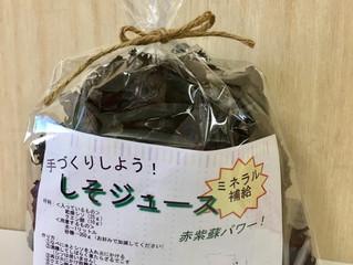 cotocotoの紫蘇ジュース