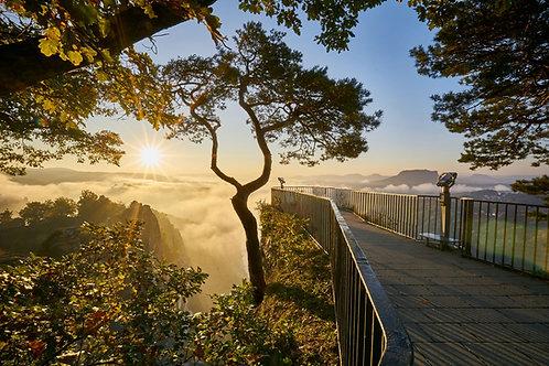 Morgenstund (Bild-Nr. 01020068)