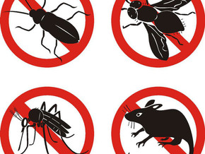 AFFORDABLE OR EFFECTIVE PEST CONTROL SERVICES IN Brantford ON