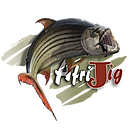 Afri Jigs Original Tigerfishing Jig