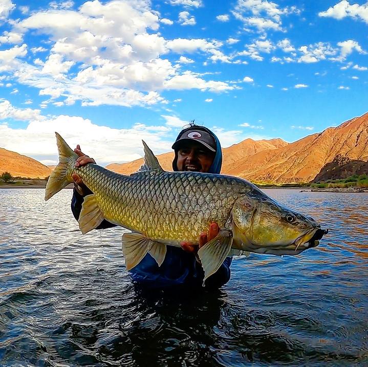 Afri Jigs Yellow fish