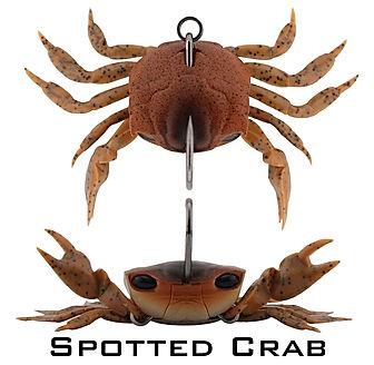 Spotted crab lrg.jpg