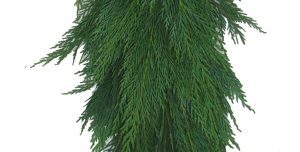Leyland Cypress Garland